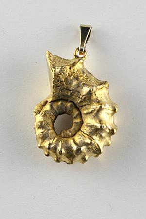 Ammonite pendant, gold electro-plated