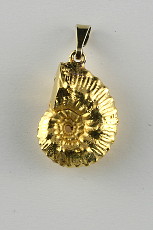 Ammonite pendant, gold electro-plated