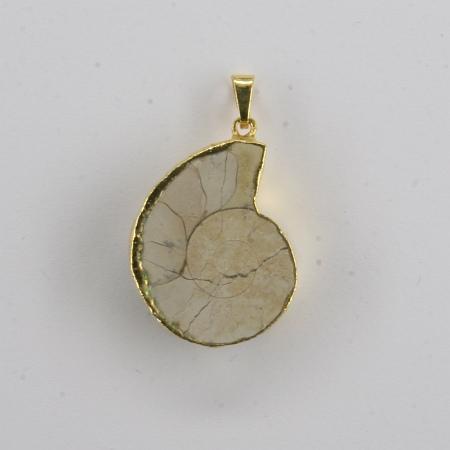 Pendant ammonite gold electro-plated