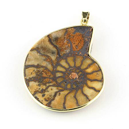 Anhänger Ammonit in Gold