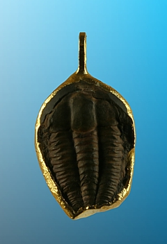 Anhänger Trilobit galvanisch vergoldet