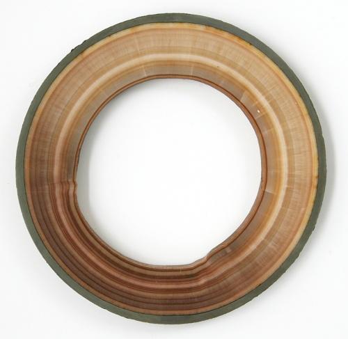 Aragonite Carlsbad pipe, polished