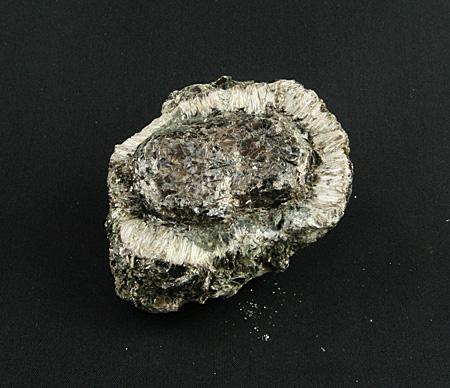 Heřmanovská koule s antofylitem a chloritem