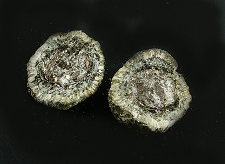 Hermanov ball, both parts, with Anthophyllite and Chlorite