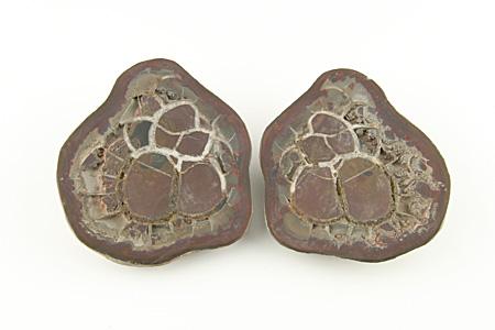 Septaria pair