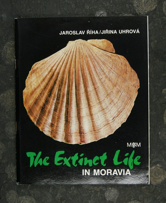 The Extinct Life (english)
